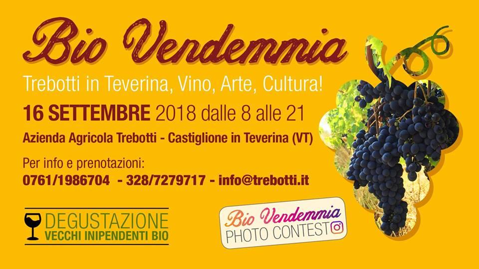 Castiglione in Teverina, 16 settembre – Bio Vendemmia Trebotti 2018