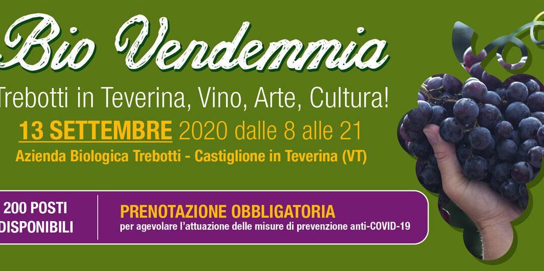 Castiglione in Teverina, 13 settembre – BioVendemmia 2020