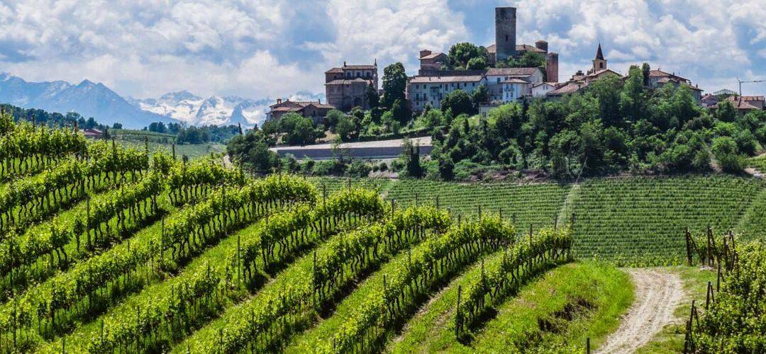Roma, 15 ottobre – Barolo, Barbaresco, Roero e altri volti del Nebbiolo in Piemonte