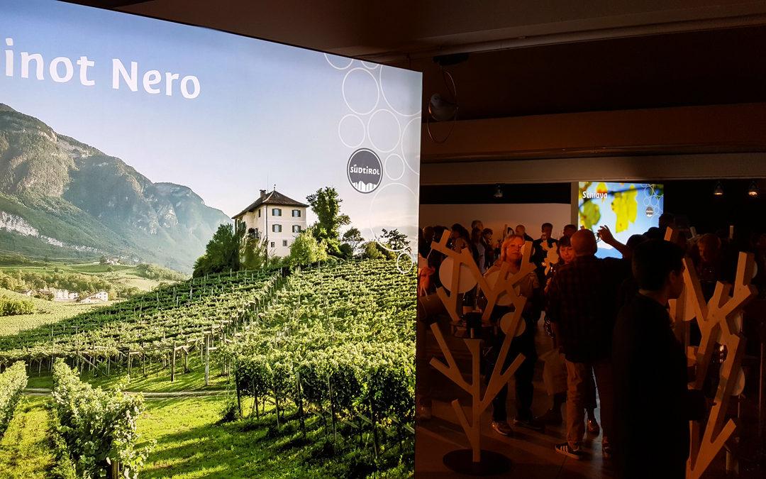 I vini dell'Alto Adige in tour: i nostri migliori assaggi
